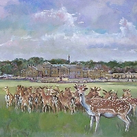 Deer at Holkham Hall