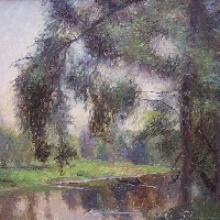 Pussy Willows near River