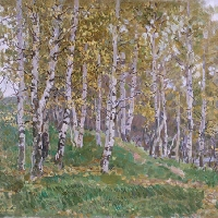 Birch Wood in Autumn